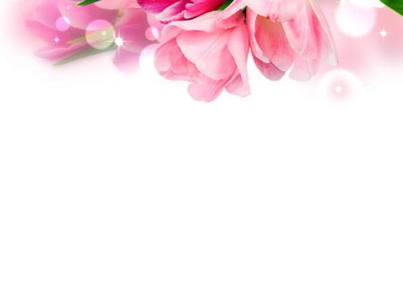 Тюльпаны. Праздничный шаблон PowerPoint