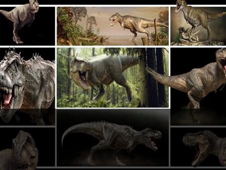 Динозавры. Шаблон для презентаций