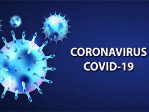 """Шаблон для презентаций """"Короновирус COVID-19"""""""