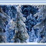 Сказочный зимний лес. Размытие границ изображений