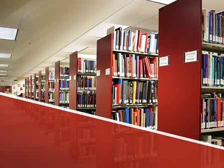 "Шаблон для презентаций ""Библиотека"""