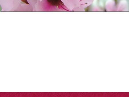 Цветочный шаблон для презентаций