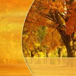 Золотая осень. Шаблон PowerPoint