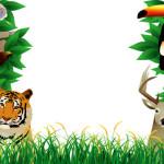 Животные тропиков. Шаблон для презентаций