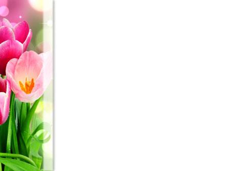 Букет тюльпанов. Шаблон для поздравительных презентаций
