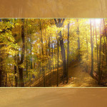 Осенний шалон для презентаций